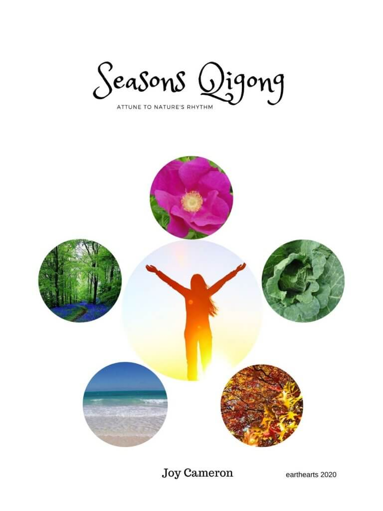 Seasons Qigong